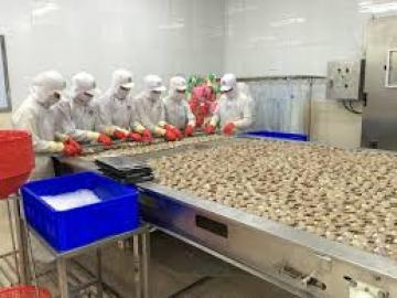 9 thị trường xuất khẩu nghêu lớn nhất ở Việt Nam
