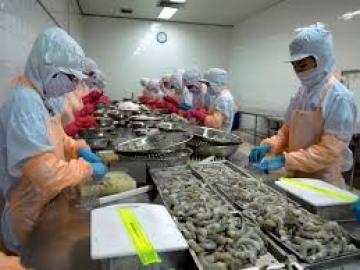 Ngành xuất khẩu thủy sản đang đảy mạnh tăng trưởng quý 4/2016